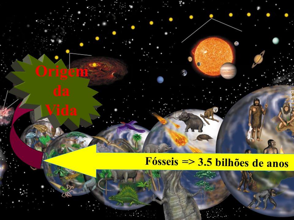 Fósseis => 3.5 bilhões de anos Origem da Vida