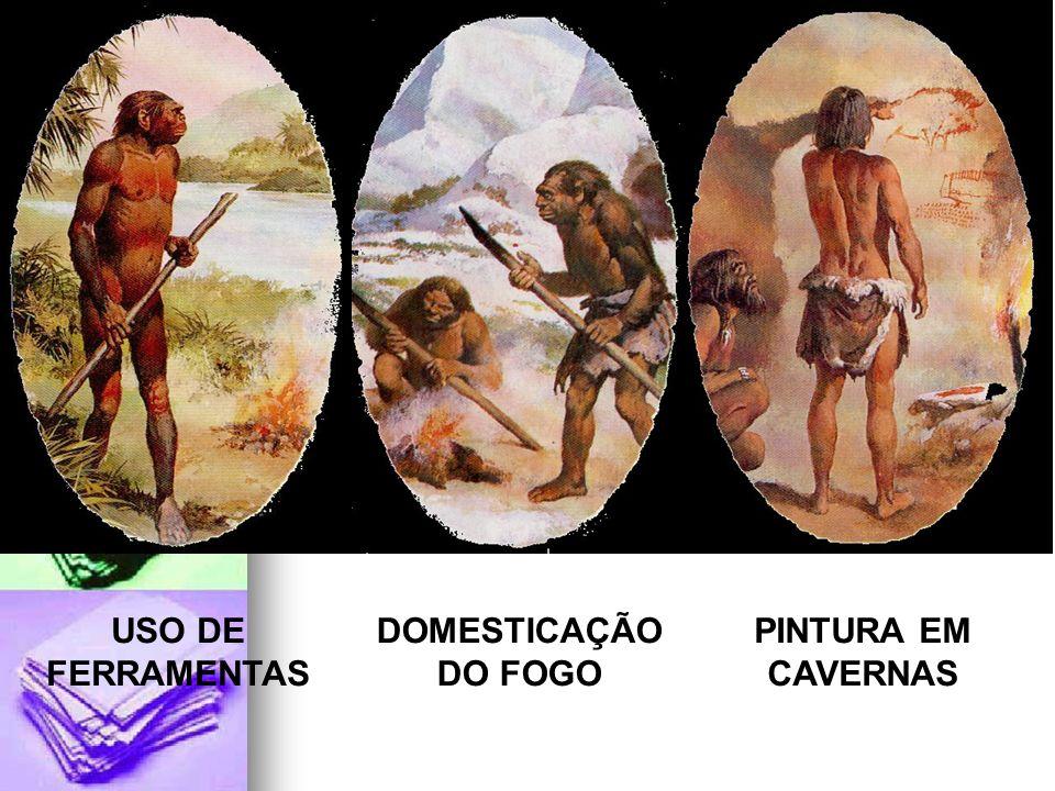 PINTURA EM CAVERNAS USO DE FERRAMENTAS DOMESTICAÇÃO DO FOGO