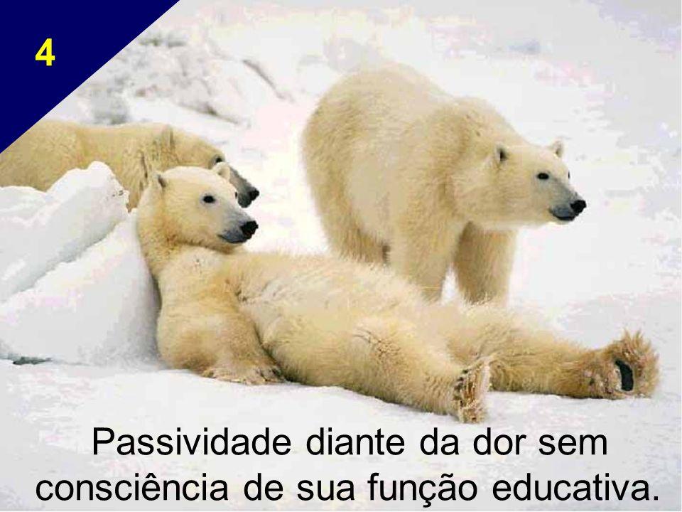 Passividade diante da dor sem consciência de sua função educativa. 4