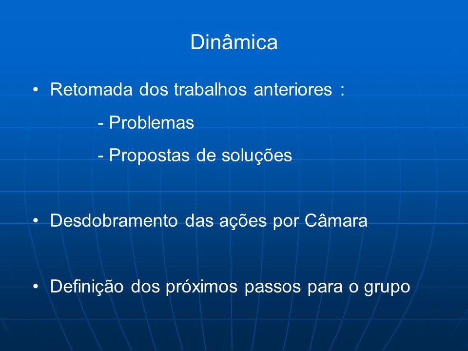 Dinâmica Retomada dos trabalhos anteriores : - Problemas - Propostas de soluções Desdobramento das ações por Câmara Definição dos próximos passos para
