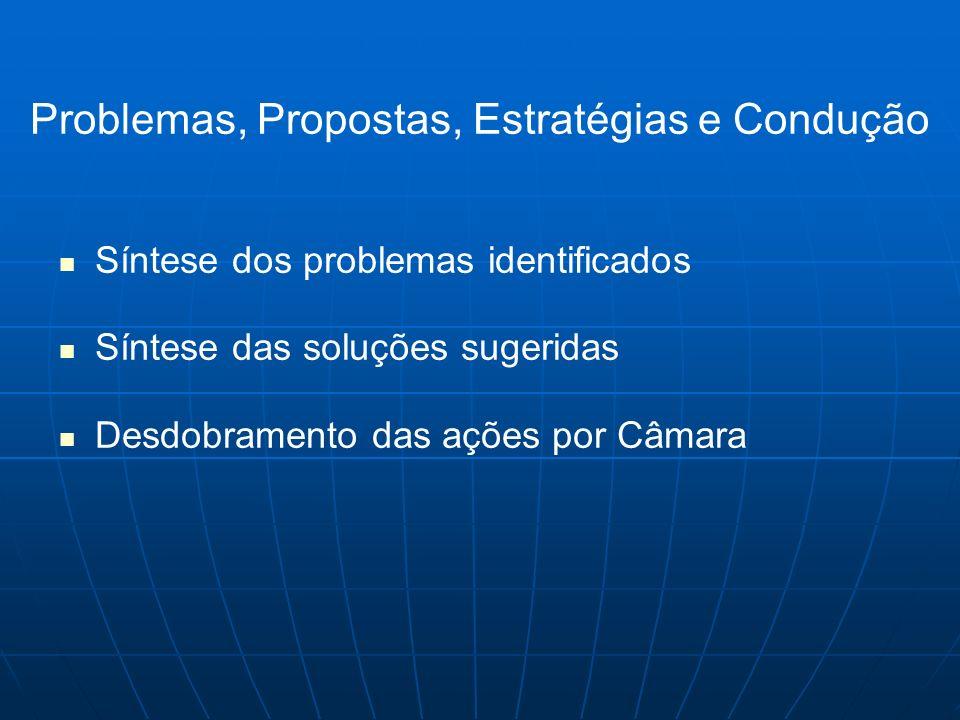 Síntese dos problemas identificados Síntese das soluções sugeridas Desdobramento das ações por Câmara Problemas, Propostas, Estratégias e Condução