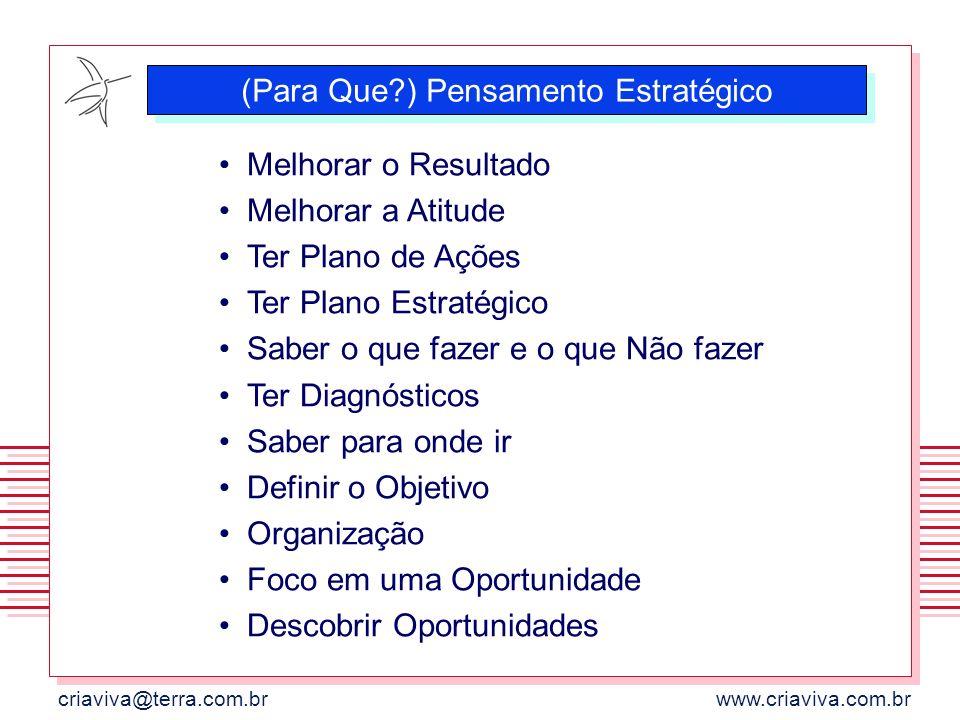 criaviva@terra.com.brwww.criaviva.com.br (Para Que?) Pensamento Estratégico Melhorar o Resultado Melhorar a Atitude Ter Plano de Ações Ter Plano Estra