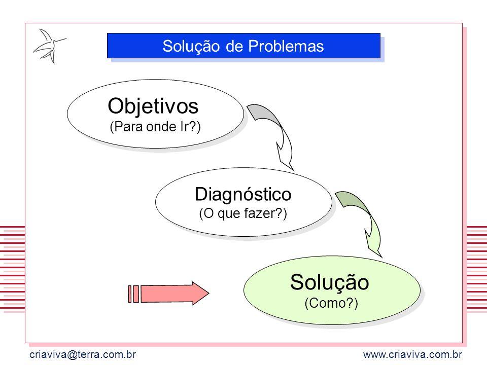 criaviva@terra.com.brwww.criaviva.com.br Objetivos (Para onde Ir?) Solução de Problemas Diagnóstico (O que fazer?) Solução (Como?)