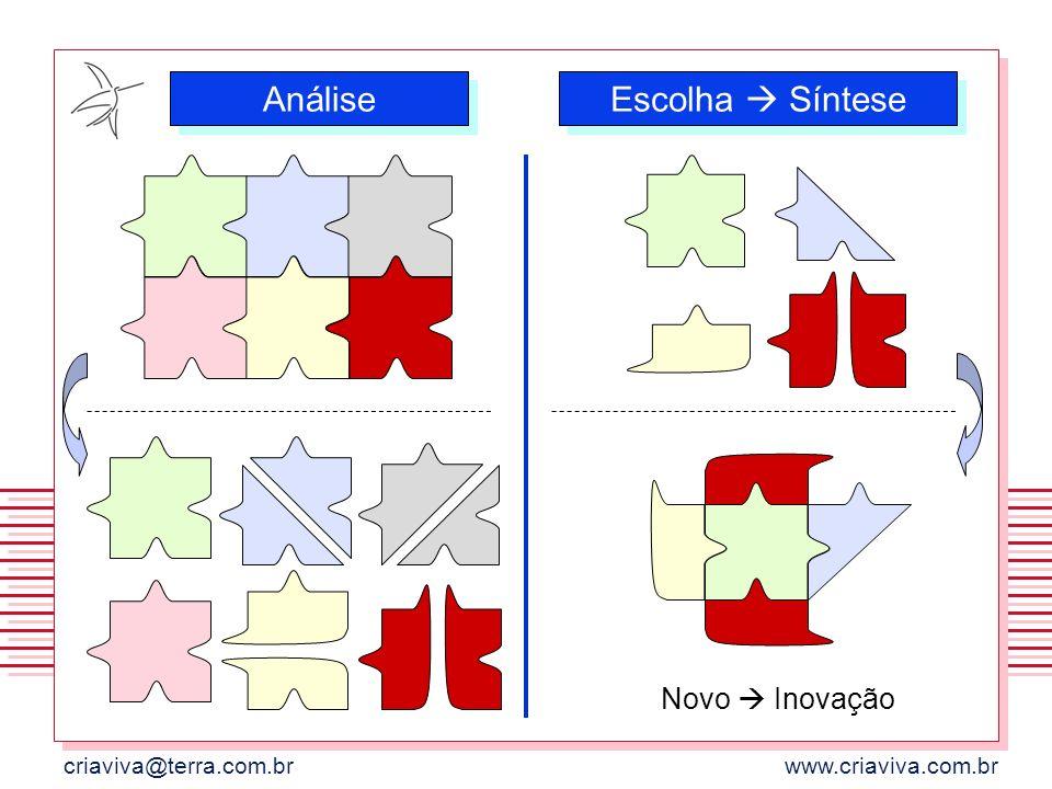 criaviva@terra.com.brwww.criaviva.com.br Análise Escolha Síntese Novo Inovação