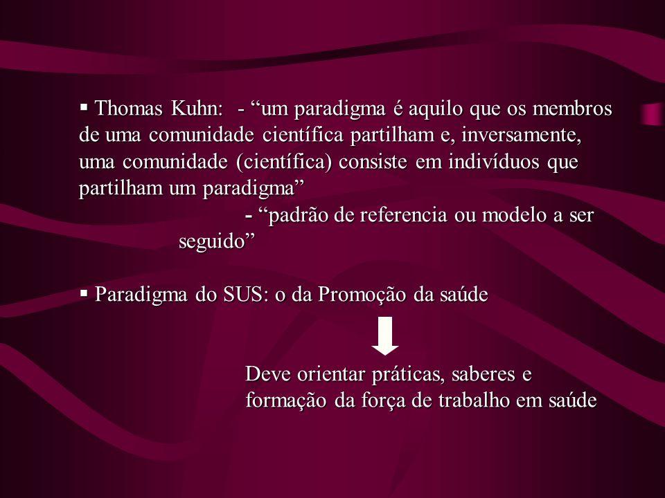 Thomas Kuhn: - um paradigma é aquilo que os membros de uma comunidade científica partilham e, inversamente, uma comunidade (científica) consiste em in