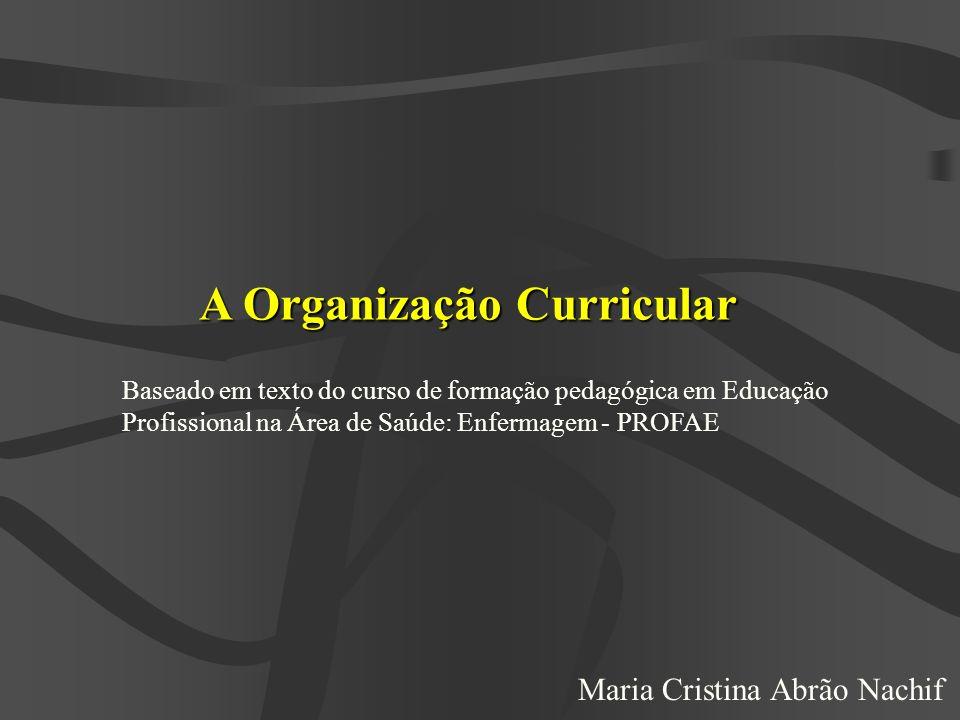 A Organização Curricular Baseado em texto do curso de formação pedagógica em Educação Profissional na Área de Saúde: Enfermagem - PROFAE Maria Cristin