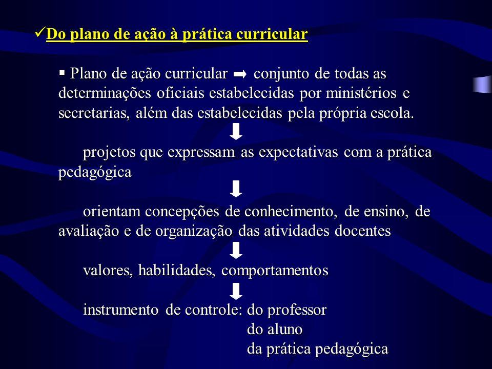 Do plano de ação à prática curricular Do plano de ação à prática curricular Plano de ação curricular conjunto de todas as determinações oficiais estab