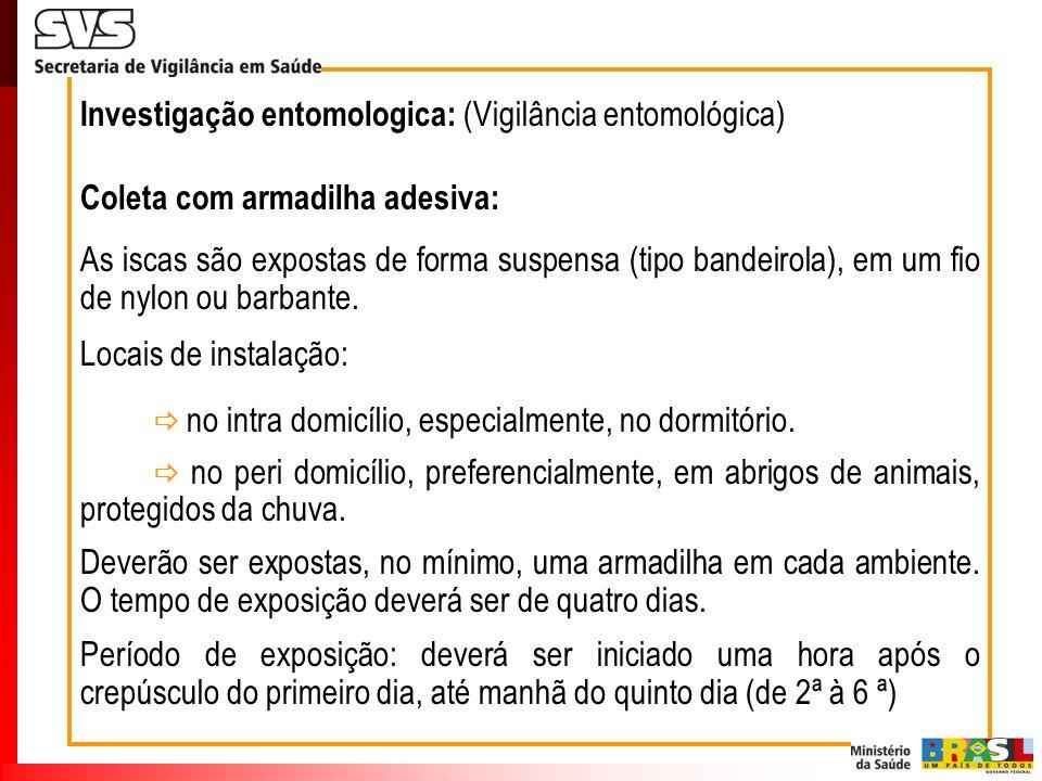 Investigação entomologica: (Vigilância entomológica) Coleta com armadilha adesiva: As iscas são expostas de forma suspensa (tipo bandeirola), em um fi