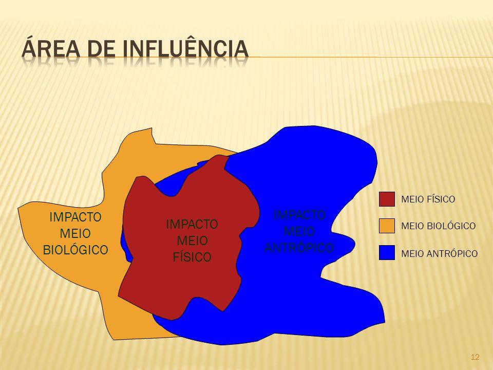 12 IMPACTO MEIO BIOLÓGICO IMPACTO MEIO ANTRÓPICO IMPACTO MEIO FÍSICO MEIO FÍSICO MEIO BIOLÓGICO MEIO ANTRÓPICO