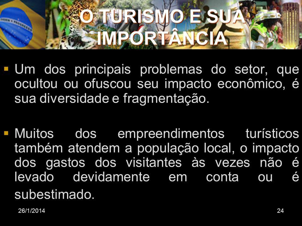 26/1/201424 Um dos principais problemas do setor, que ocultou ou ofuscou seu impacto econômico, é sua diversidade e fragmentação. Muitos dos empreendi