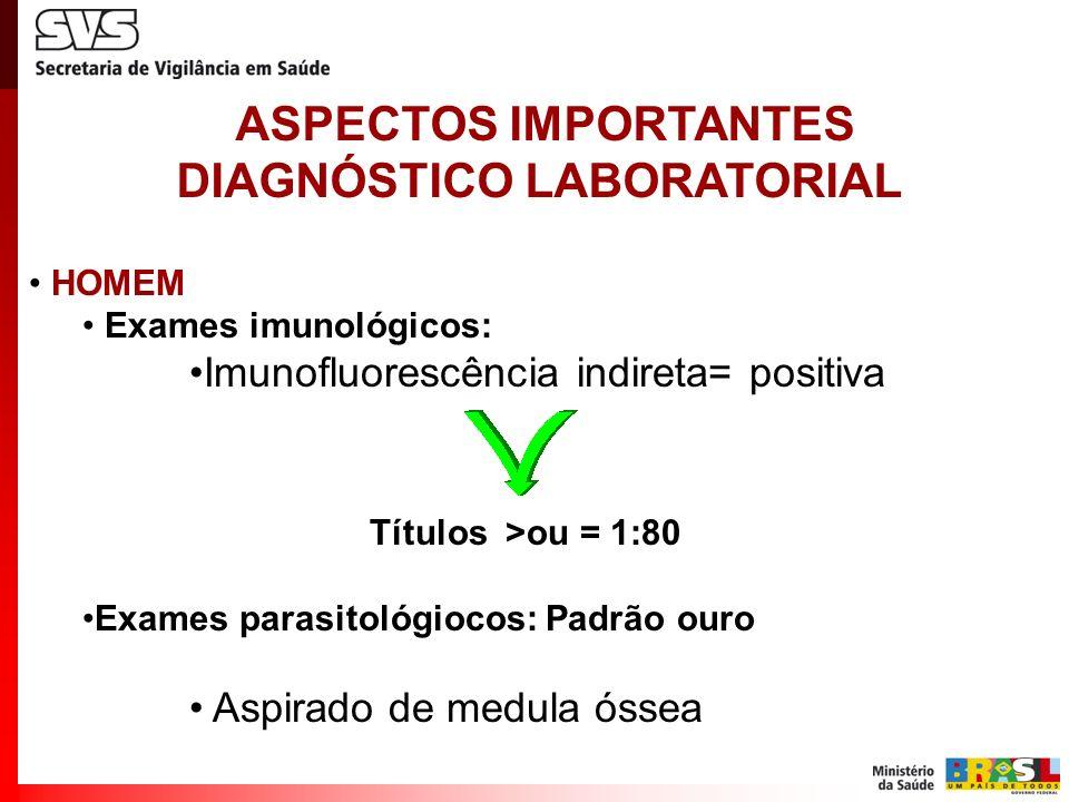 CÃO Exames imunológicos: Punção de sangue venoso Imunofluorescência indireta= Sororreagente Títulos >ou = 1:40 ELISA Exames parasitológiocos: Aspirado de medula óssea, linfonodos e outros ASPECTOS IMPORTANTES DIAGNÓSTICO LABORATORIAL