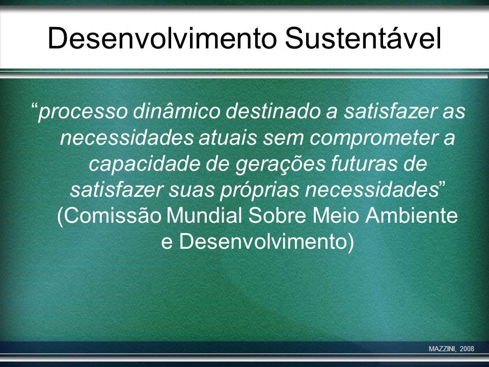 Desenvolvimento Sustentável processo dinâmico destinado a satisfazer as necessidades atuais sem comprometer a capacidade de gerações futuras de satisf