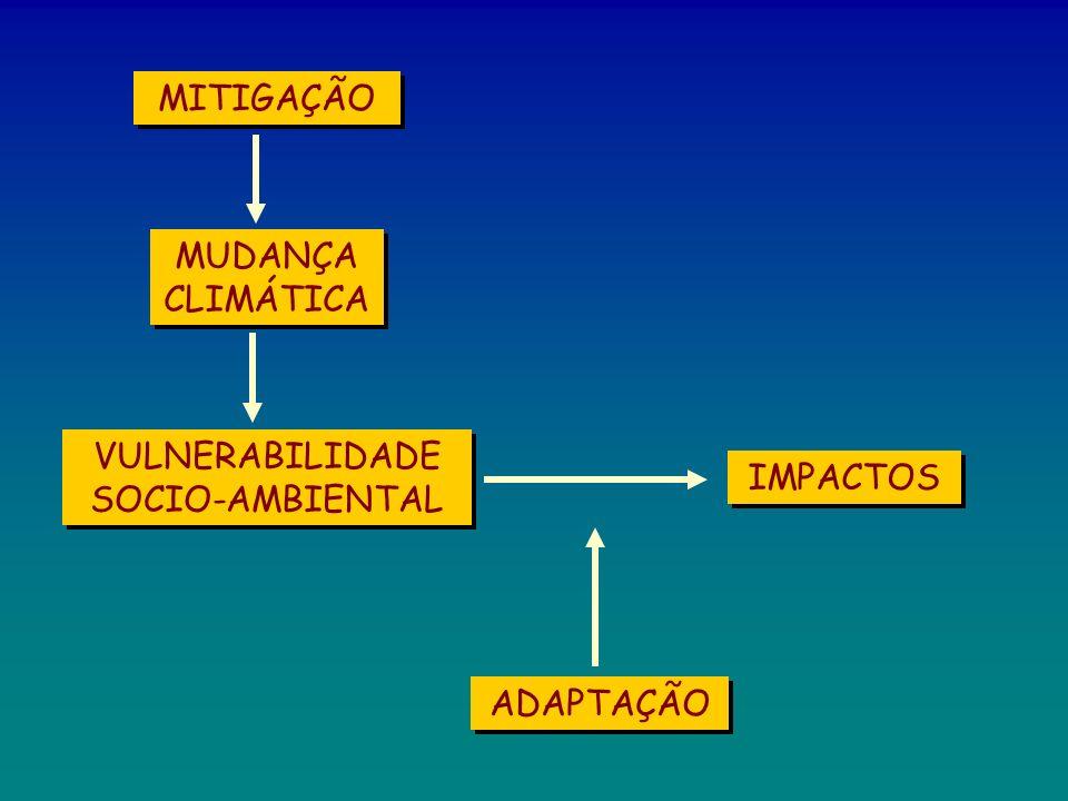 MUDANÇA CLIMÁTICA MITIGAÇÃO VULNERABILIDADE SOCIO-AMBIENTAL IMPACTOS ADAPTAÇÃO