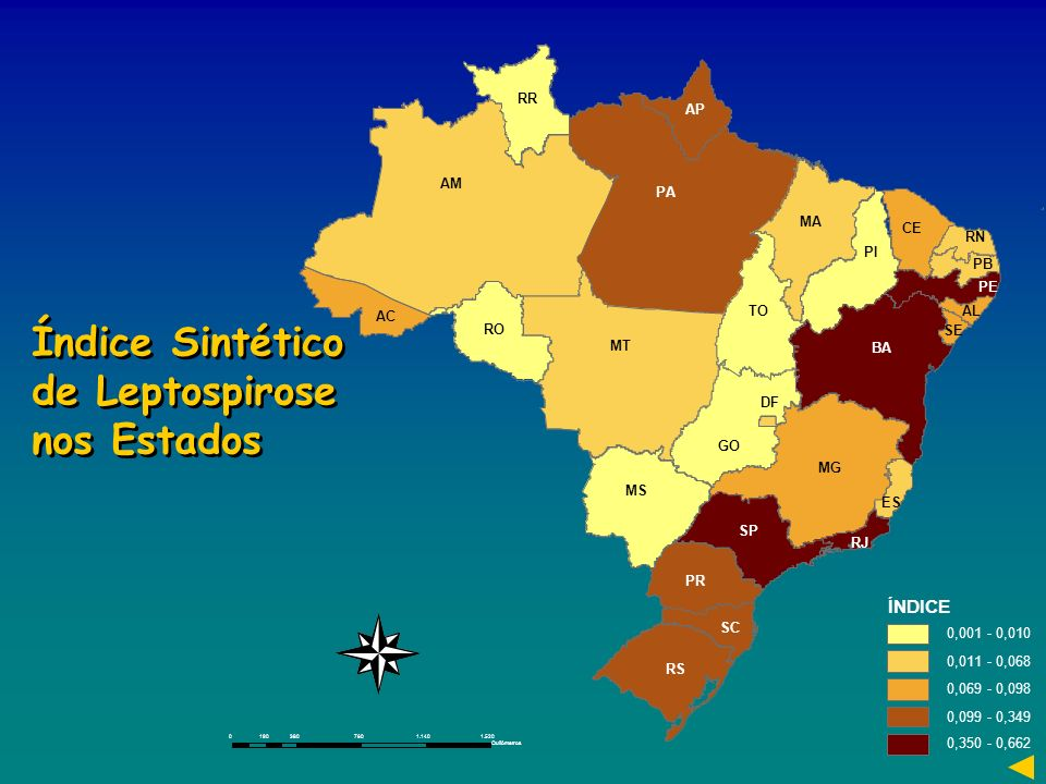 ÍNDICE 0,001 - 0,010 0,011 - 0,068 0,069 - 0,098 0,099 - 0,349 0,350 - 0,662 03807601.1401.520190 Quilômetros Índice Sintético de Leptospirose nos Est