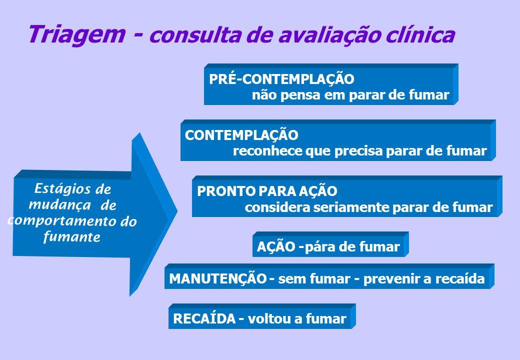 Principais substâncias tóxicas: Monóxido de Carbono Alcatrão Nicotina SESSÃO Nº 1