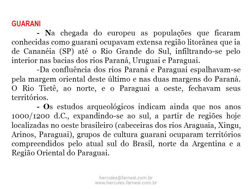GUARANI - Na chegada do europeu as populações que ficaram conhecidas como guarani ocupavam extensa região litorânea que ia de Cananéia (SP) até o Rio