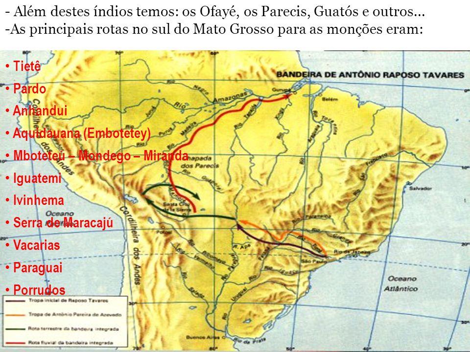 hercules@farnesi.com.br www.hercules.farnesi.com.br - Além destes índios temos: os Ofayé, os Parecis, Guatós e outros... -As principais rotas no sul d