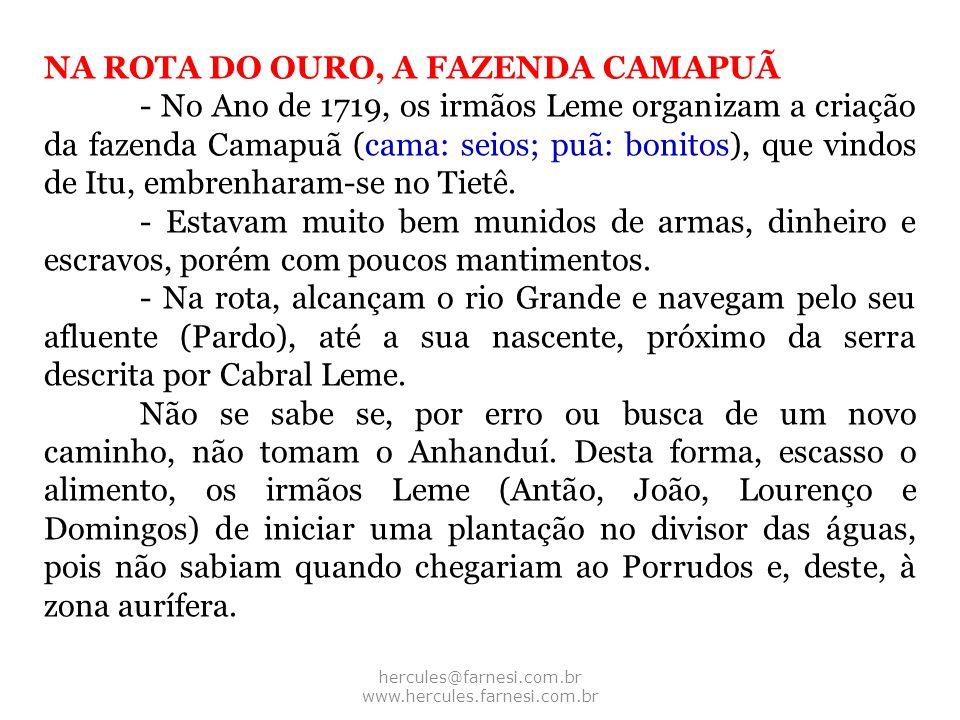 hercules@farnesi.com.br www.hercules.farnesi.com.br NA ROTA DO OURO, A FAZENDA CAMAPUÃ - No Ano de 1719, os irmãos Leme organizam a criação da fazenda
