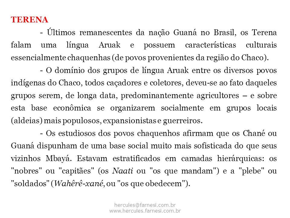 TERENA - Últimos remanescentes da nação Guaná no Brasil, os Terena falam uma língua Aruak e possuem características culturais essencialmente chaquenha