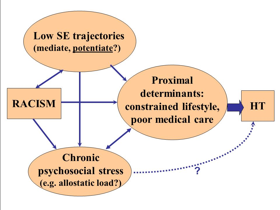 Low SE trajectories (mediate, potentiate?) RACISM HT Chronic psychosocial stress (e.g. allostatic load?) Proximal determinants: constrained lifestyle,