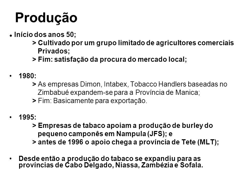 Produção Início dos anos 50; > Cultivado por um grupo limitado de agricultores comerciais Privados; > Fim: satisfação da procura do mercado local; 198