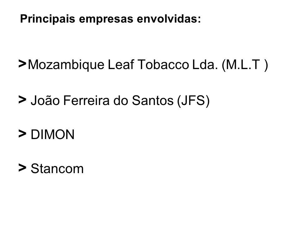 Principais empresas envolvidas: > Mozambique Leaf Tobacco Lda. (M.L.T ) > João Ferreira do Santos (JFS) > DIMON > Stancom