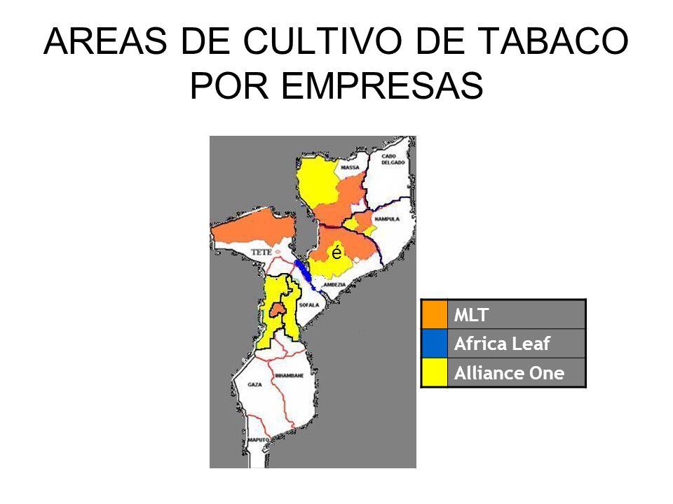 AREAS DE CULTIVO DE TABACO POR EMPRESAS MLT Africa Leaf Alliance One é