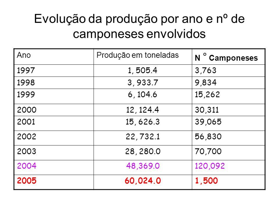 Evolução da produção por ano e nº de camponeses envolvidos AnoProdução em toneladas N ° Camponeses 19971, 505.43,763 19983, 933.79,834 19996, 104.615,