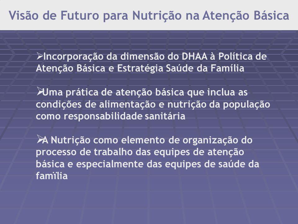 Controle das carências por micronutrientes Suplementação com a megadose de Vitamina A – nas áreas consideradas de risco; sulfato ferroso e ácido fólic