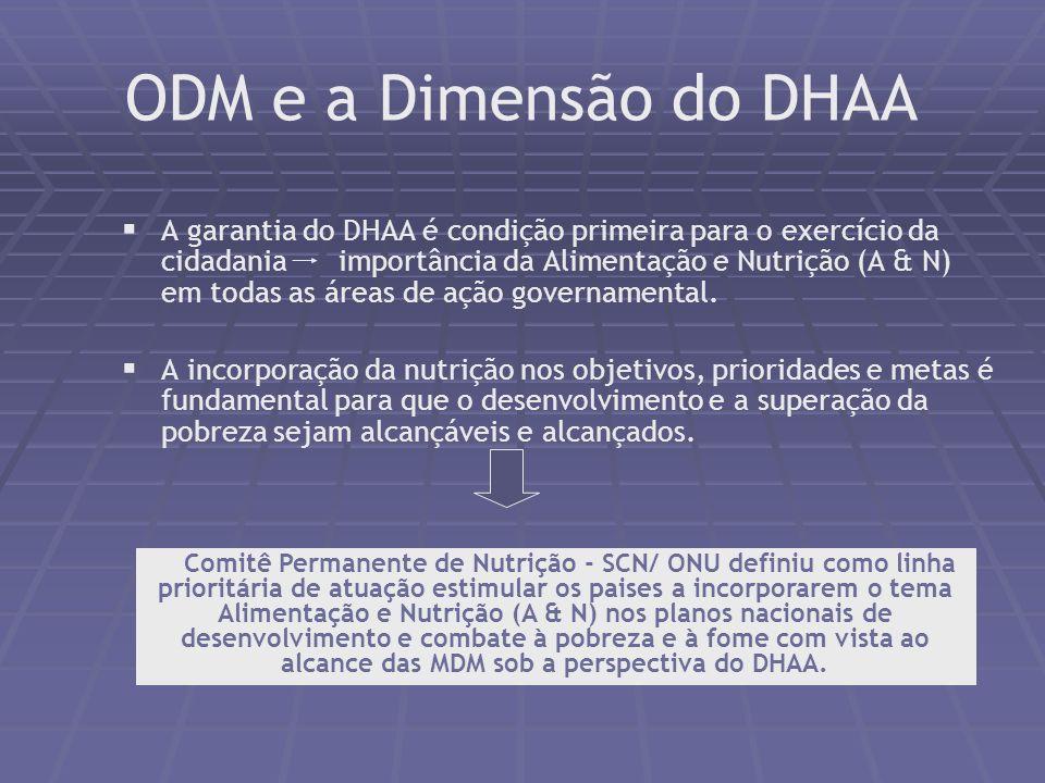ODM e a Dimensão do DHAA A garantia do DHAA é condição primeira para o exercício da cidadania importância da Alimentação e Nutrição (A & N) em todas as áreas de ação governamental.