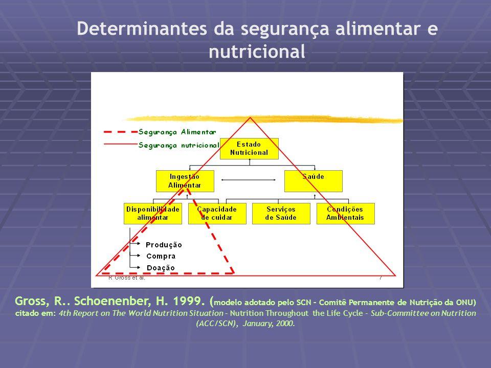 Taxa de internação por desnutrição em crianças de até 1 ano de idade Brasil e Regiões 2002 a 2005 - * (1 por 1000) Fonte: SIH