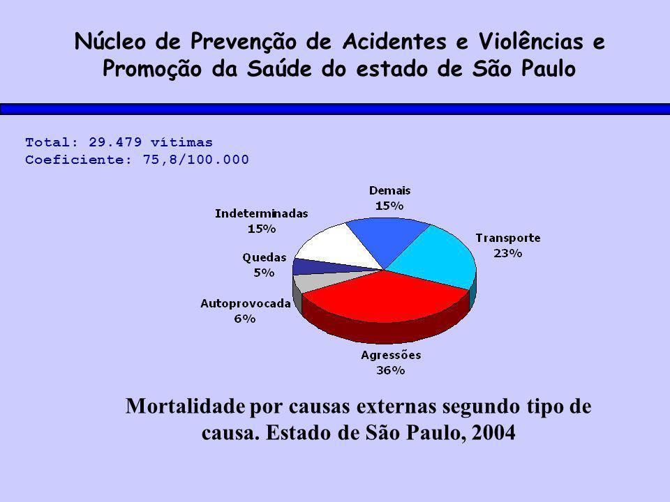 Mortalidade por causas externas segundo tipo de causa.