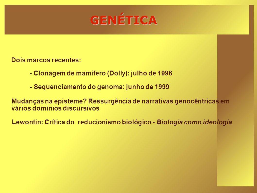 GENÉTICA Dois marcos recentes: Lewontin: Crítica do reducionismo biológico - Biologia como ideologia Mudanças na episteme? Ressurgência de narrativas