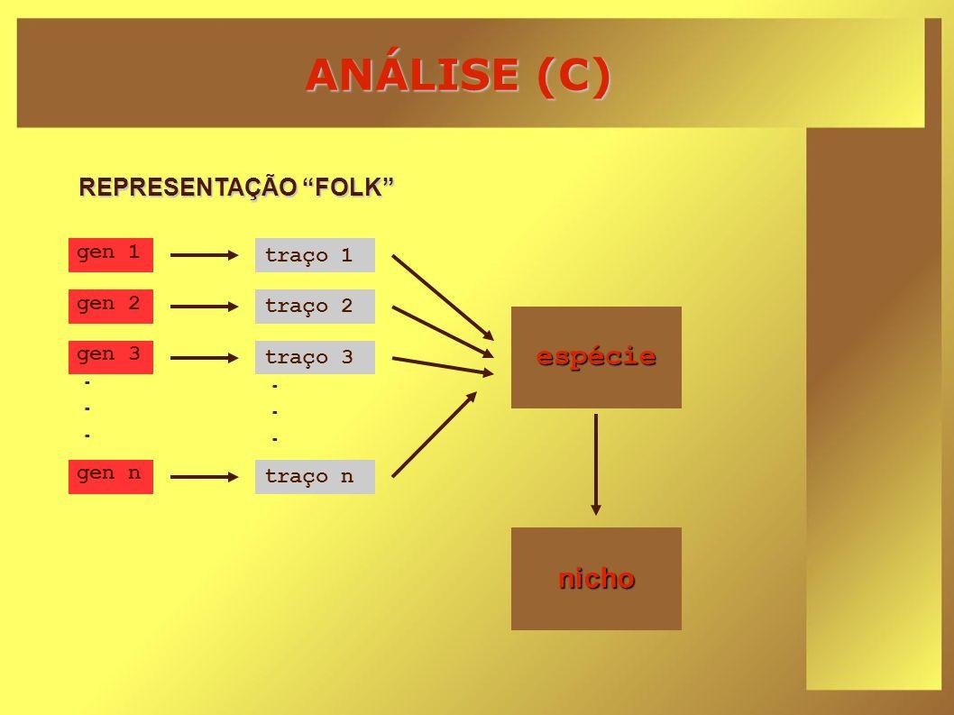 ANÁLISE (C) gen 1...... gen 2 gen 3 gen n traço 1...... traço 2 traço 3 traço n espécie nicho REPRESENTAÇÃO FOLK
