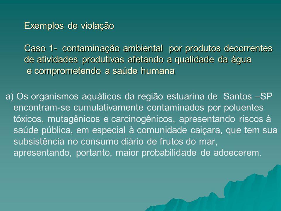 Exemplos de violação Caso 1- contaminação ambiental por produtos decorrentes de atividades produtivas afetando a qualidade da água e comprometendo a s
