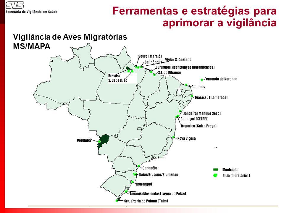 Ferramentas e estrat é gias para aprimorar a vigilância Vigilância de Aves Migratórias MS/MAPA