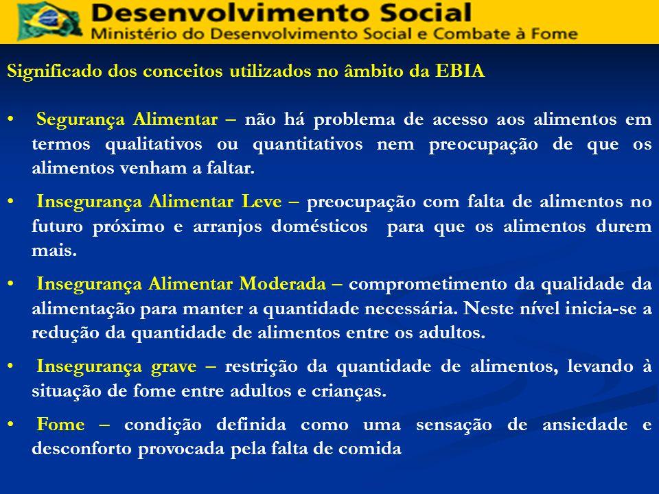 Fonte: IBGE. Pesquisa Nacional por Amostra de Domicílios 2004.