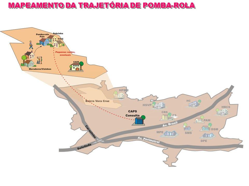 MAPEAMENTO DA TRAJETÓRIA DE POMBA-ROLA