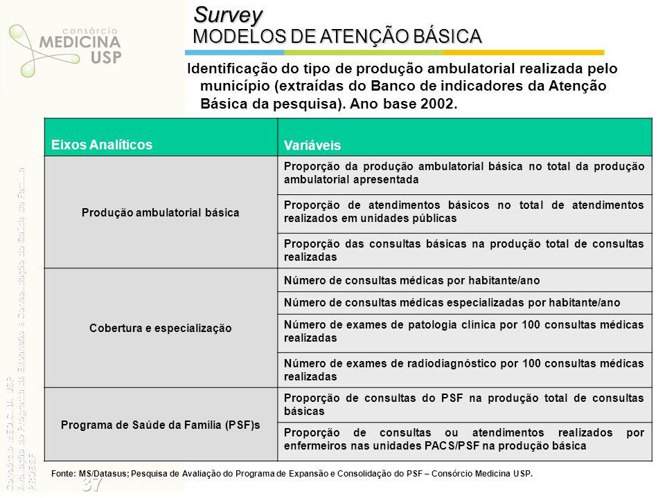 Identificação do tipo de produção ambulatorial realizada pelo município (extraídas do Banco de indicadores da Atenção Básica da pesquisa). Ano base 20
