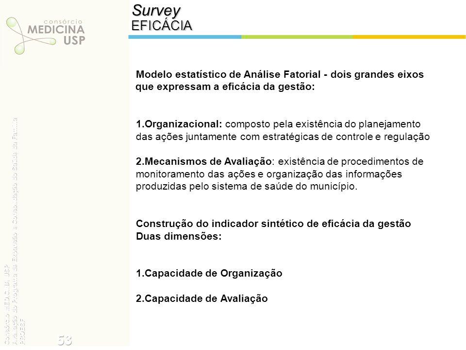 SurveyEFICÁCIA Modelo estatístico de Análise Fatorial - dois grandes eixos que expressam a eficácia da gestão: 1.Organizacional: composto pela existên