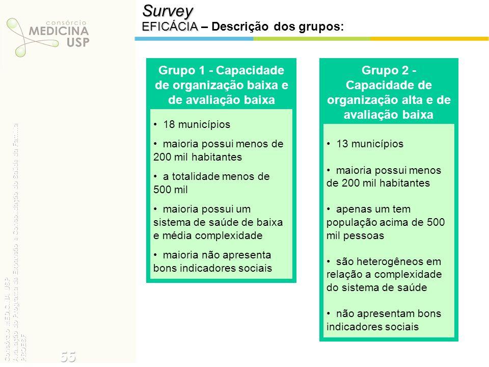Survey EFICÁCIA EFICÁCIA – Descrição dos grupos: 18 municípios maioria possui menos de 200 mil habitantes a totalidade menos de 500 mil maioria possui