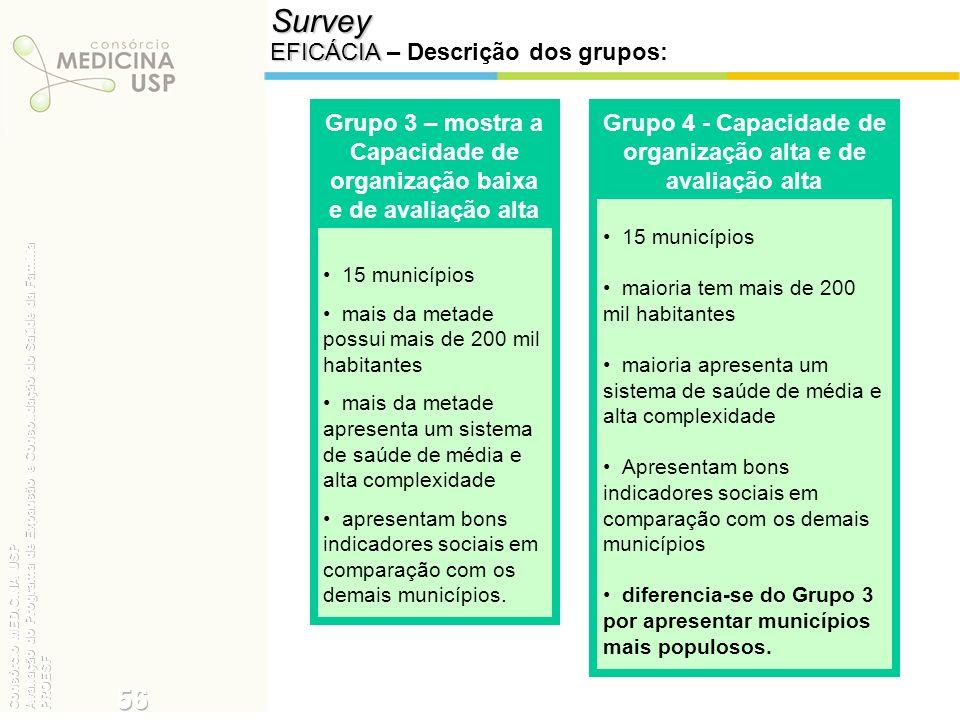 Survey EFICÁCIA EFICÁCIA – Descrição dos grupos: 15 municípios mais da metade possui mais de 200 mil habitantes mais da metade apresenta um sistema de