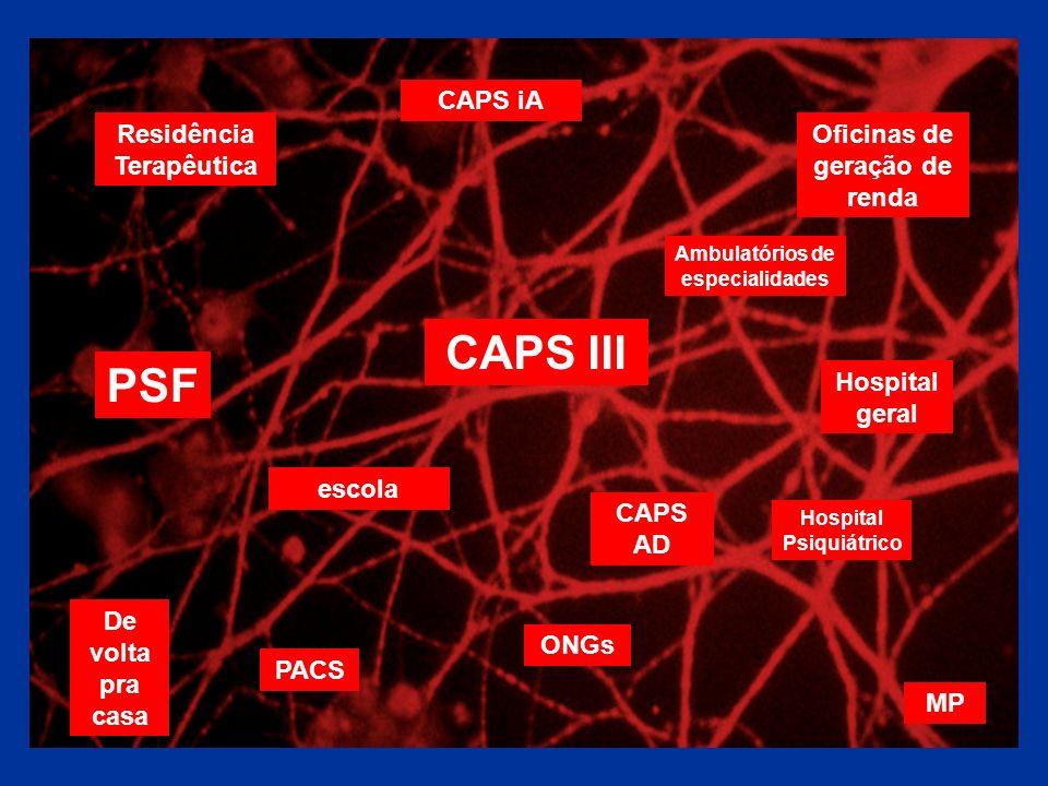 CAPS III Oficinas de geração de renda Residência Terapêutica PSF escola Ambulatórios de especialidades CAPS AD De volta pra casa CAPS iA Hospital Psiq