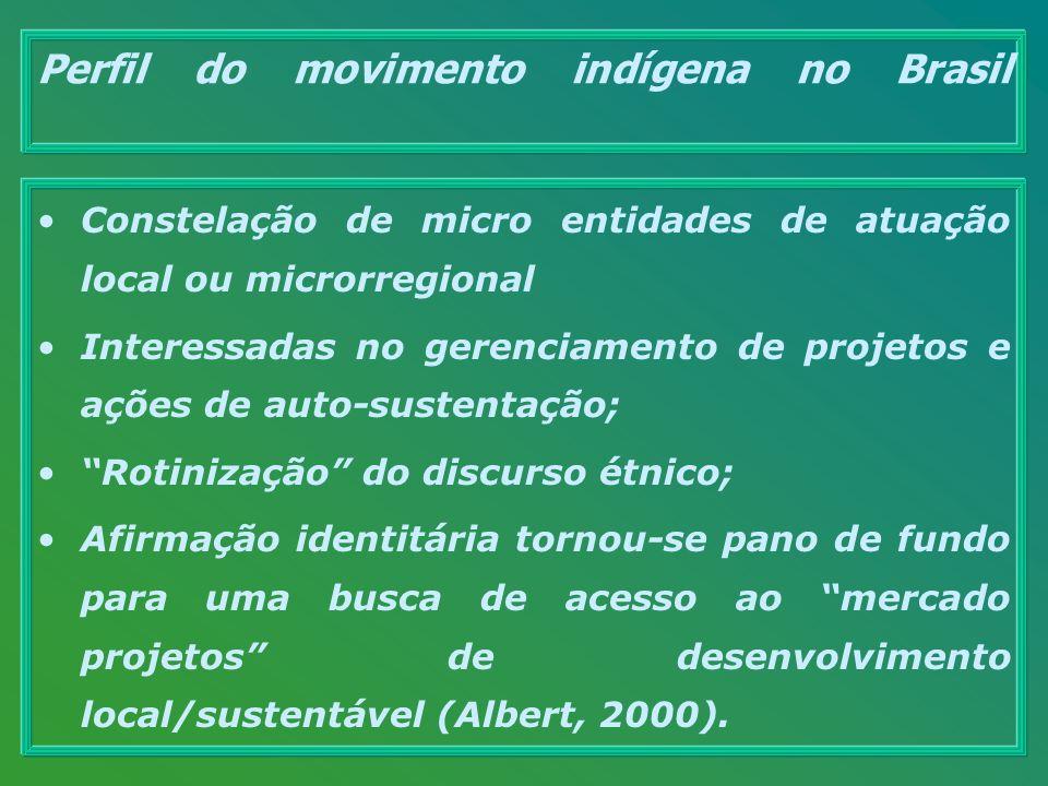 Perfil do movimento indígena no Brasil Constelação de micro entidades de atuação local ou microrregional Interessadas no gerenciamento de projetos e a