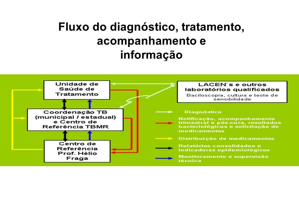 Fluxo do diagnóstico, tratamento, acompanhamento e informação