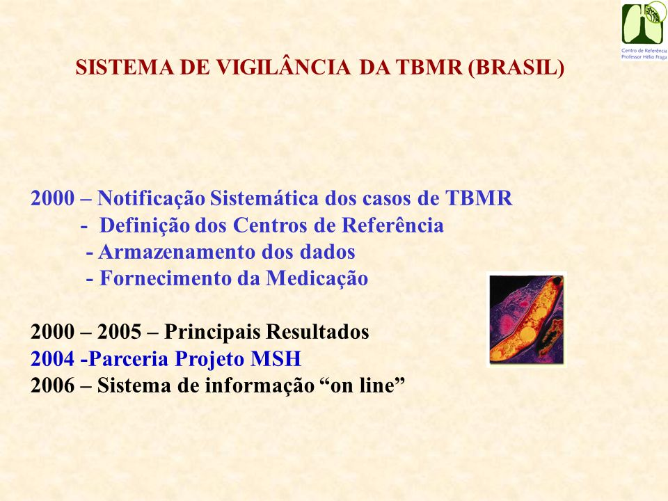 Tuberculose Multirresistente Brasil - 1995 a junho 2006 Fonte: CRPHF-SVS-MS