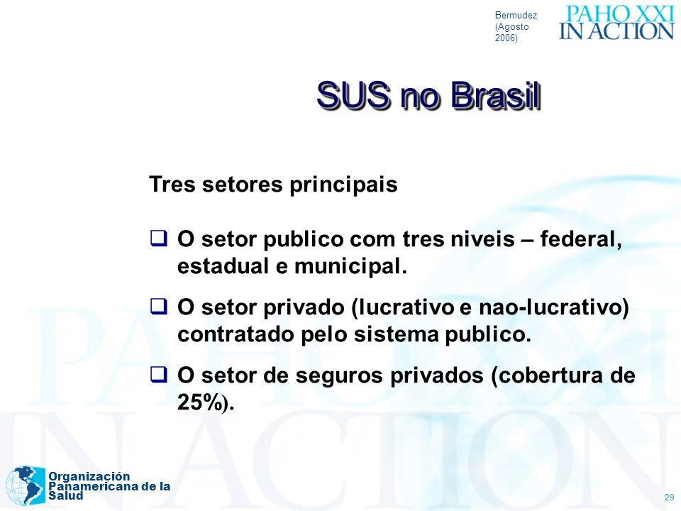 Bermudez (Agosto 2006) Organización Panamericana de la Salud 29 Tres setores principais O setor publico com tres niveis – federal, estadual e municipa