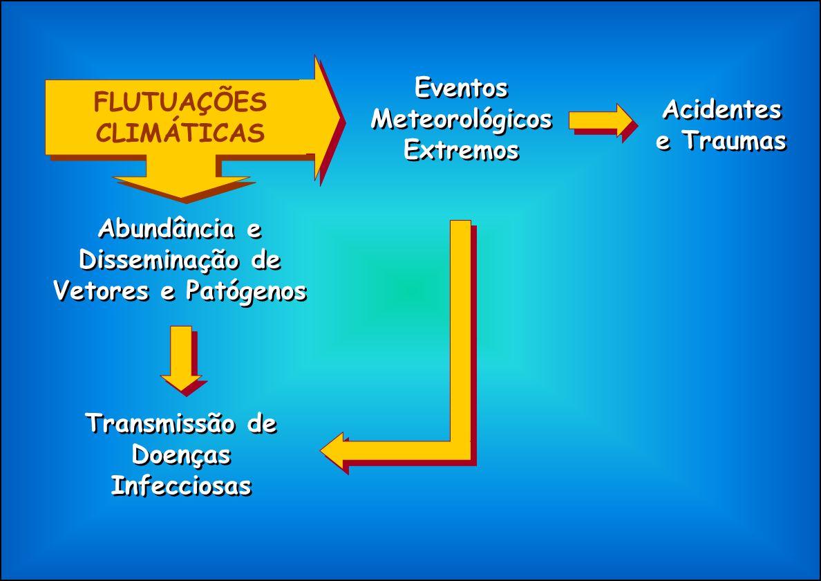 FLUTUAÇÕES CLIMÁTICAS Eventos Meteorológicos Extremos Acidentes e Traumas Abundância e Disseminação de Vetores e Patógenos Transmissão de Doenças Infe