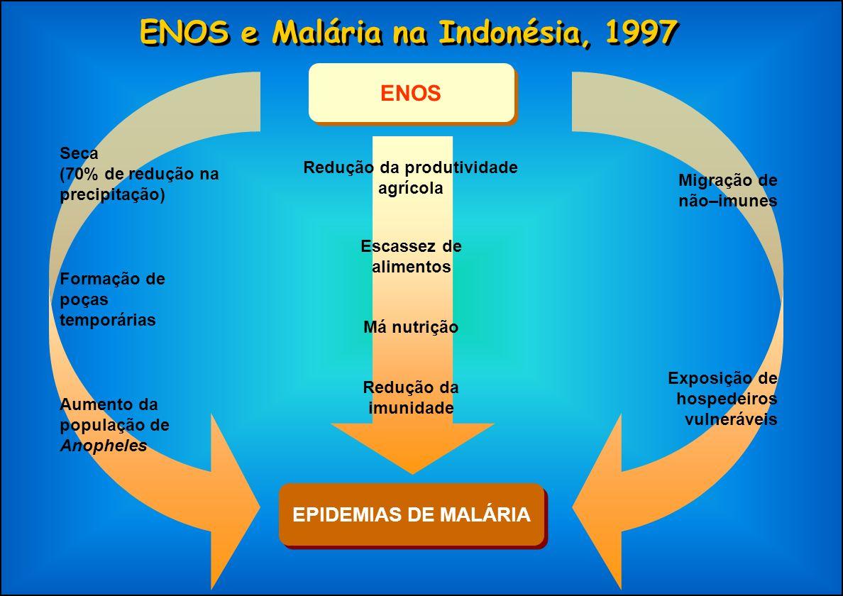 ENOS e Malária na Indonésia, 1997 EPIDEMIAS DE MALÁRIA Seca (70% de redução na precipitação) Formação de poças temporárias Aumento da população de Ano