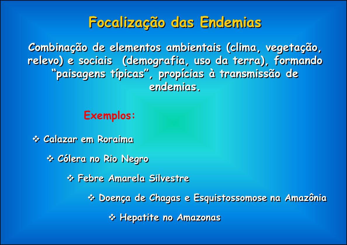 Focalização das Endemias Combinação de elementos ambientais (clima, vegetação, relevo) e sociais (demografia, uso da terra), formando paisagens típica